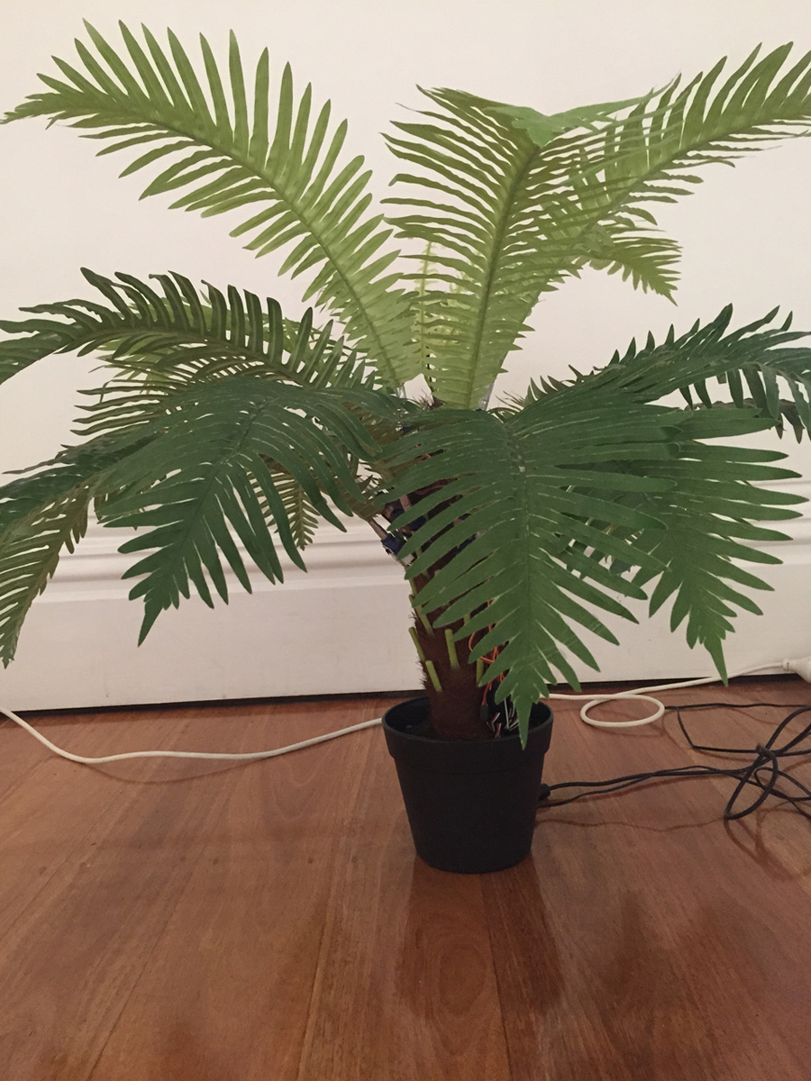 Artereal_Gallery_2015_Tully_Arnot_Nervous_Plant_Palm