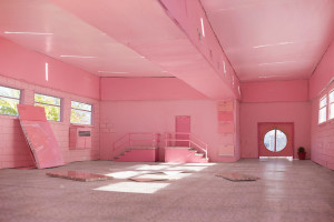 Anna Carey_Pink Flamingo_2017_Giclée print_86.7 x 130cm _Edition of 7.