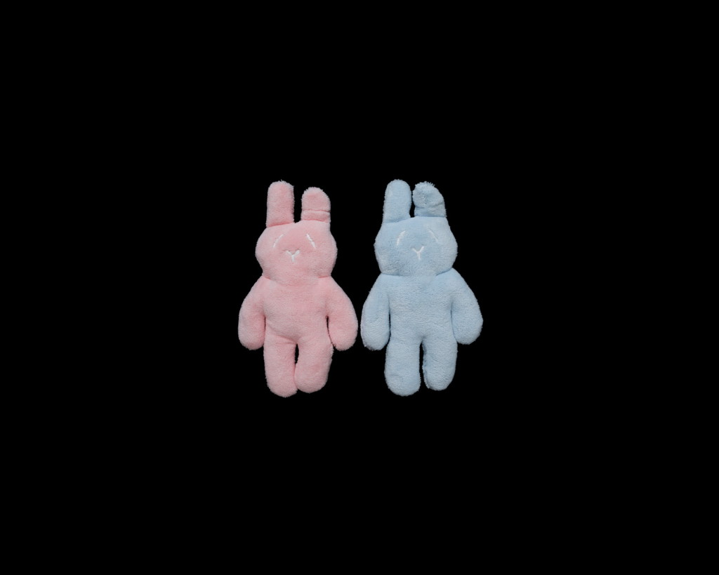 Anne MacDonald_Pink & Blue (bunnies no. 3)_2017_fine art ink-jet print_edition of 5_110 x 135 cm.