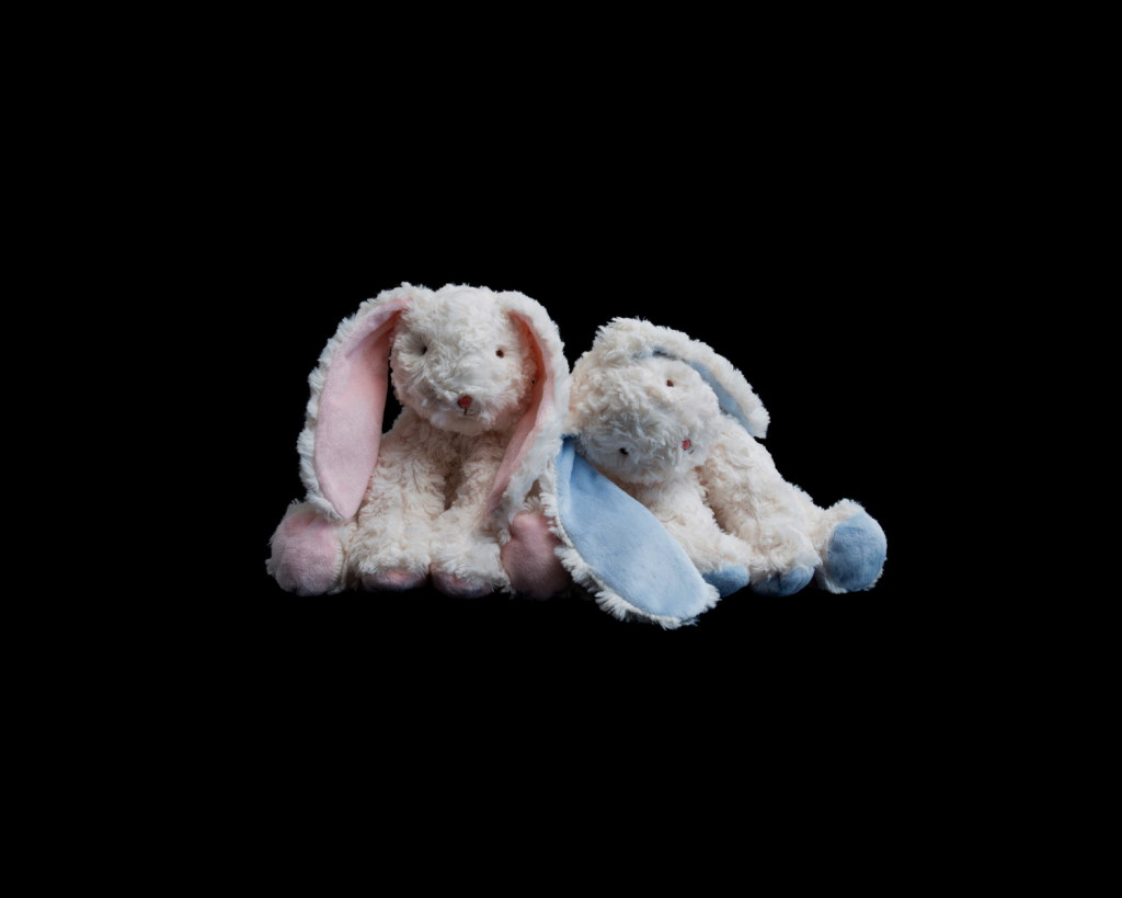 Anne MacDonald_Pink & Blue (bunnies no. 6)_2017_fine art ink-jet print_edition of 5_110 x 135 cm.